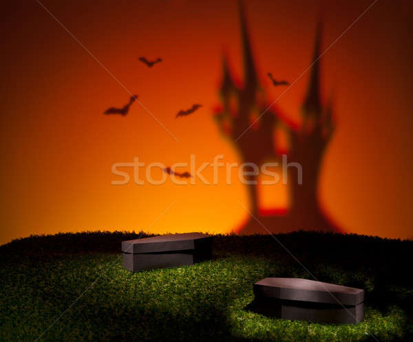 Bats of the scary castle  Stock photo © 3523studio