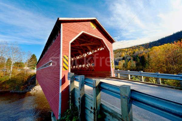 Wooden covered bridge  Stock photo © 3523studio
