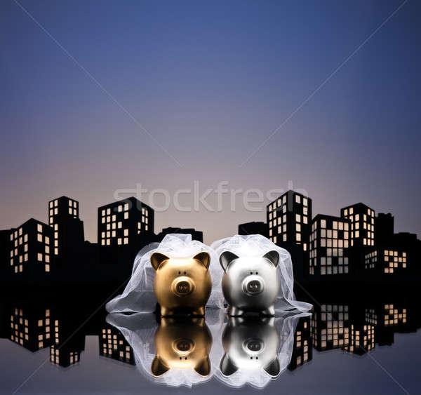 Metropolis stad lesbische spaarvarken burgerlijk unie Stockfoto © 3523studio