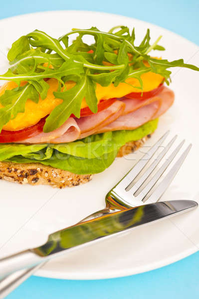 Open sandwich with melted cheese Stock photo © 3523studio