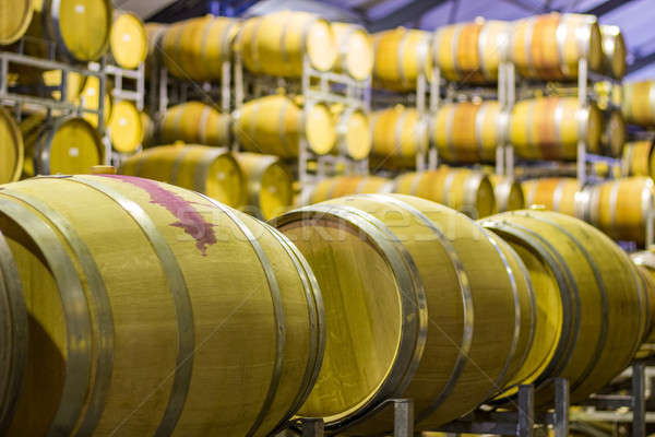 Wine barrel Stock photo © 3pphoto31
