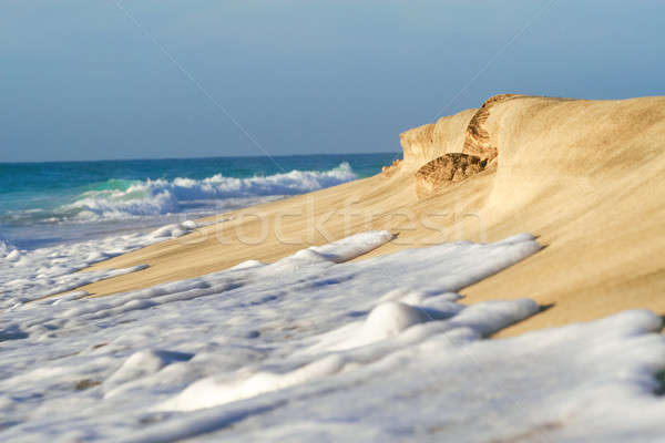 Plage mer vagues rive ciel Photo stock © 3pphoto31
