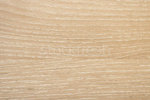 Sandy Molina Ash Wooden texture Stock photo © 3pphoto31
