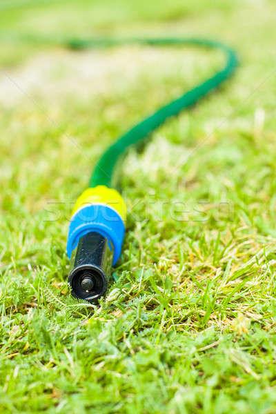 Sequía jardinería agua tubería gotas secar Foto stock © 3pphoto31