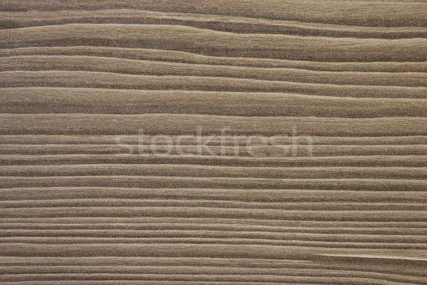 Kahverengi ahşap doku gerçek marangozluk ahşap Stok fotoğraf © 3pphoto31