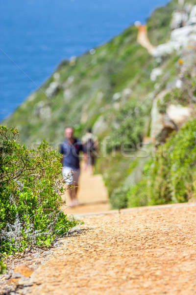 Pathway in the nature Stock photo © 3pphoto31