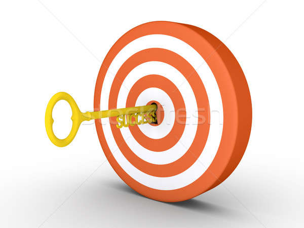 Target with success-key in keyhole Stock photo © 6kor3dos