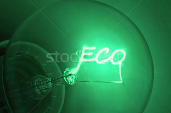 Ecological  green energy. Stock photo © 72soul