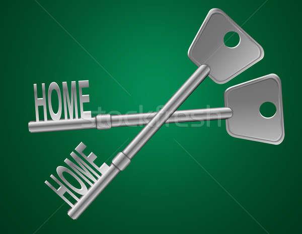 Home veiligheid illustratie twee sleutels groene Stockfoto © 72soul