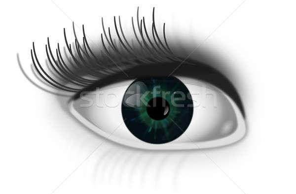 Oog illustratie groene menselijke witte ogen Stockfoto © 72soul