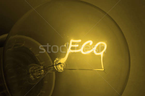 Golden ecological  energy. Stock photo © 72soul