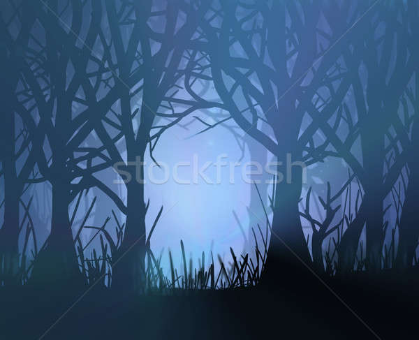 Spooky dark forest. Stock photo © 72soul