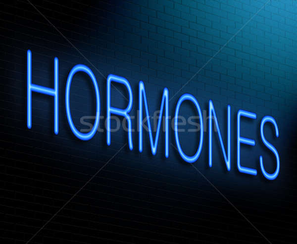 Hormone concept. Stock photo © 72soul