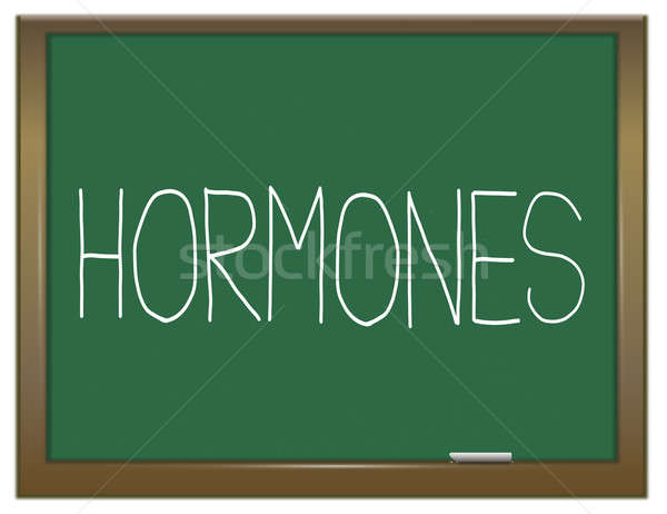 Hormones concept. Stock photo © 72soul