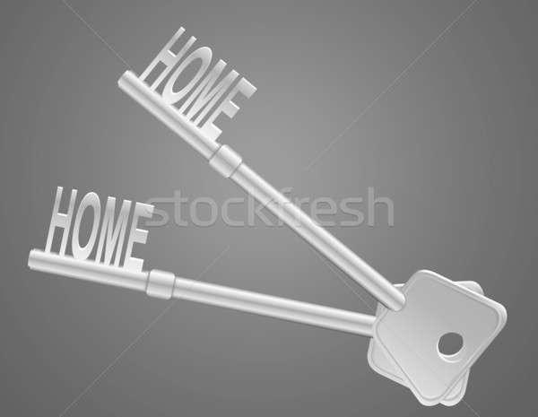 Home veiligheid illustratie twee sleutels donkere Stockfoto © 72soul