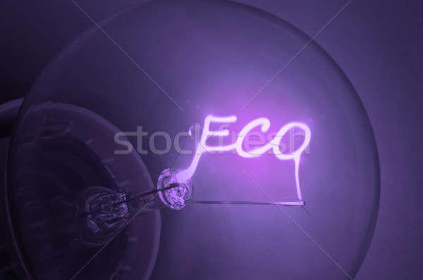 Ecological energy. Stock photo © 72soul
