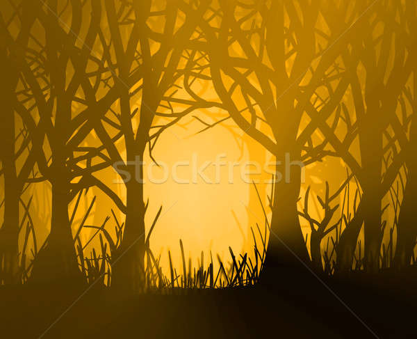 Golden forest. Stock photo © 72soul