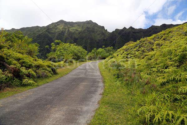 Road and Koolau Mountain Range Stock photo © 808isgreat