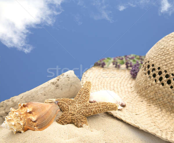beach hat and shells on sand with blue sky Stock photo © 808isgreat