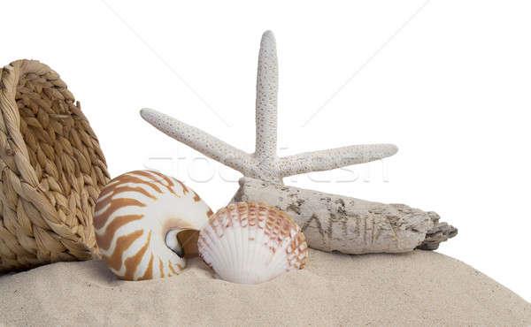 Muszle Rozgwiazda piasku biały koszyka morza Zdjęcia stock © 808isgreat