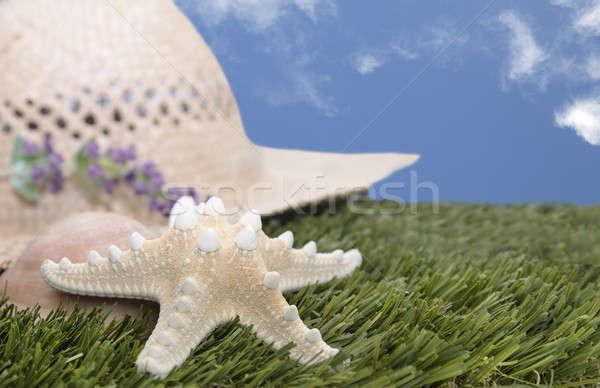 Plaży hat Rozgwiazda trawy słomkowy kapelusz Błękitne niebo Zdjęcia stock © 808isgreat