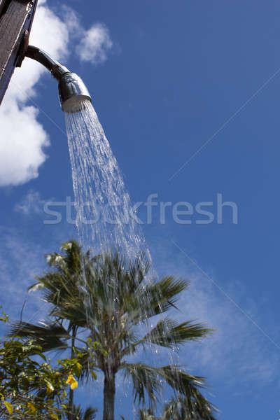 Outdoor shower with palm tree in background Stock photo © 808isgreat