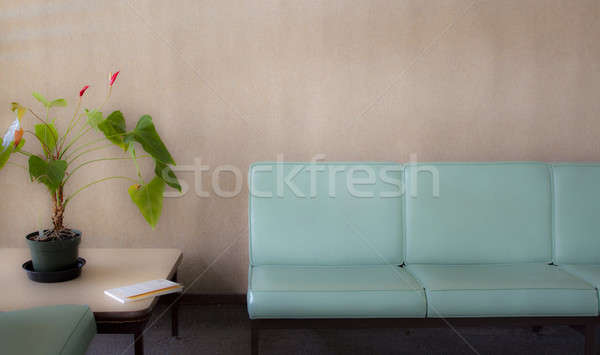 Room with chairs and potted plant - soft Stock photo © 808isgreat
