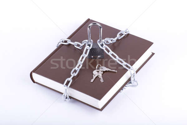 Brown book, chain, key and padlock Stock photo © a2bb5s