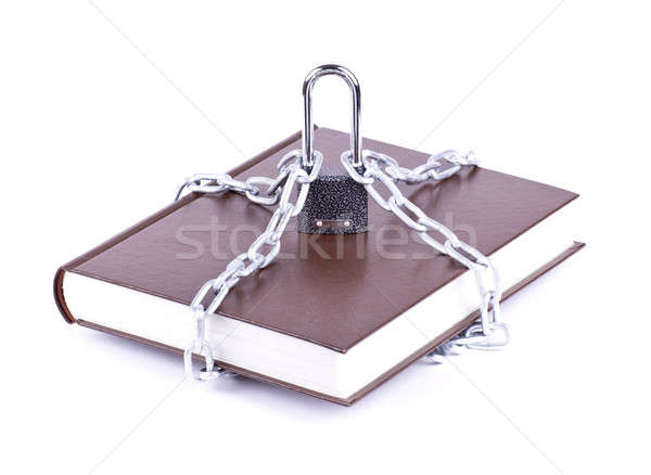 Brown book, chain and padlock Stock photo © a2bb5s