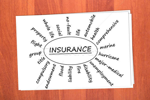 Various types of insurance Stock photo © a2bb5s