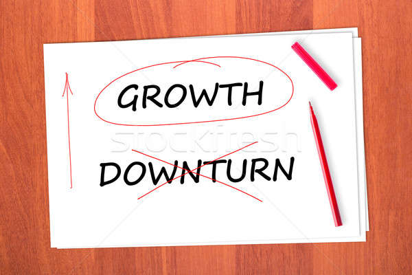 GROWTH Stock photo © a2bb5s