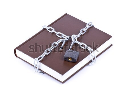 Laptop security chain and open padlock  Stock photo © a2bb5s