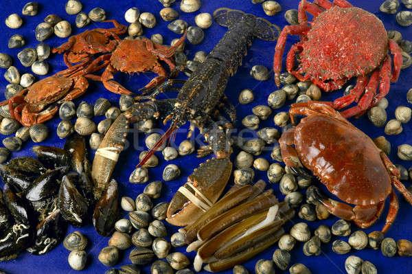 морем продовольствие разнообразие свежие омаров краба Сток-фото © ABBPhoto