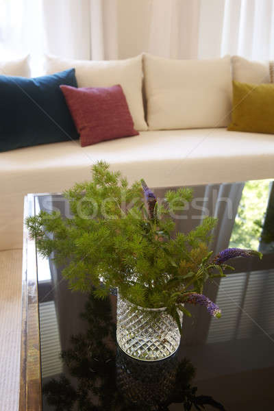 Сток-фото: завода · гостиной · избирательный · подход · окна · зеленый · диван