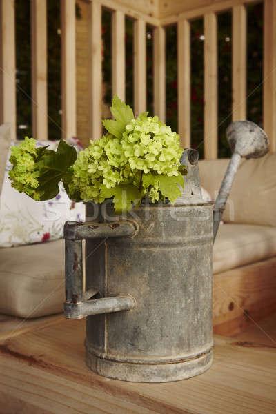 じょうろ 金属 緑 花 ストックフォト © ABBPhoto
