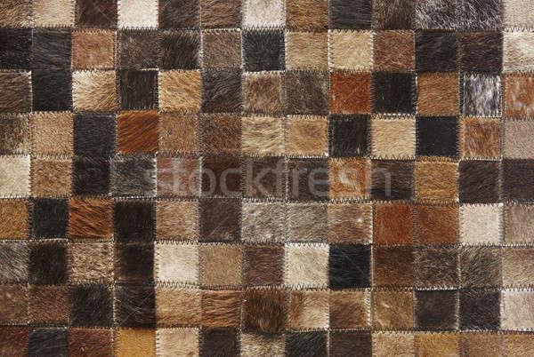 Handwerk huid pleinen dier haren leder Stockfoto © ABBPhoto