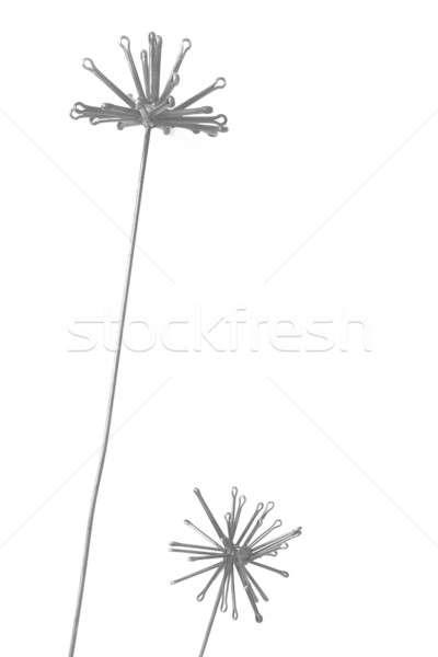 Metaliczny kwiaty dwa odizolowany biały pionowy Zdjęcia stock © ABBPhoto