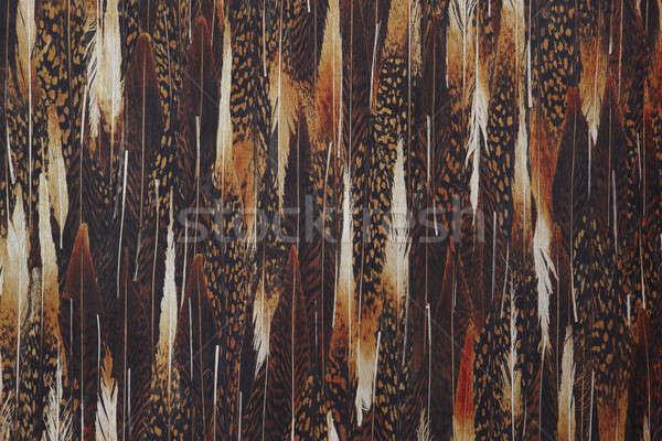 аннотация горизонтальный копия пространства коричневый Сток-фото © ABBPhoto