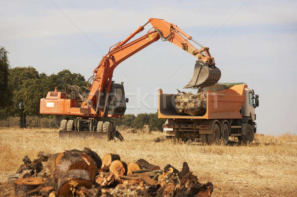 Earthmoving wheel loader machine and truck Stock photo © ABBPhoto