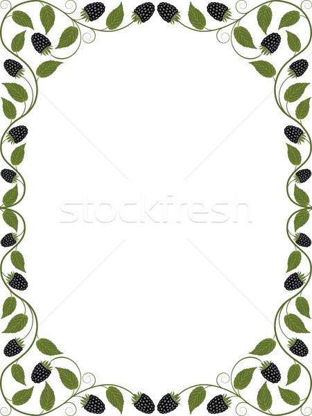 Vintage floral frame. Decorative pattern. Vector illustration. Stock photo © AbsentA