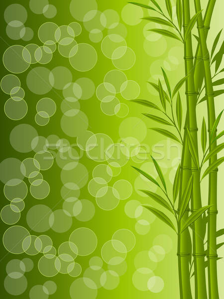 Abstract floral background with a bamboo Stock photo © AbsentA