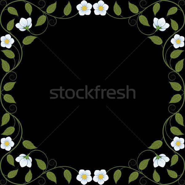 Vintage frame decoratief patroon blad Stockfoto © AbsentA