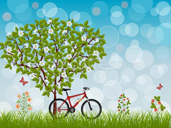 Yaz manzara bisiklet çiçek kelebek doğa Stok fotoğraf © AbsentA