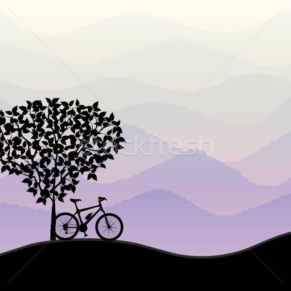 Seyahat bisiklet siluet ağaç spor doğa Stok fotoğraf © AbsentA