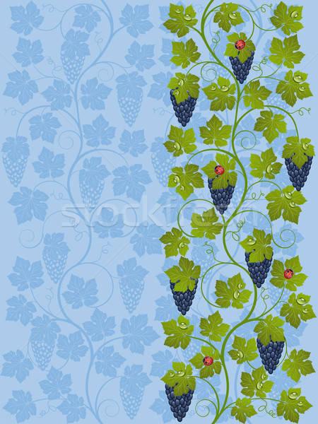Floral vid textura resumen frutas fondo Foto stock © AbsentA