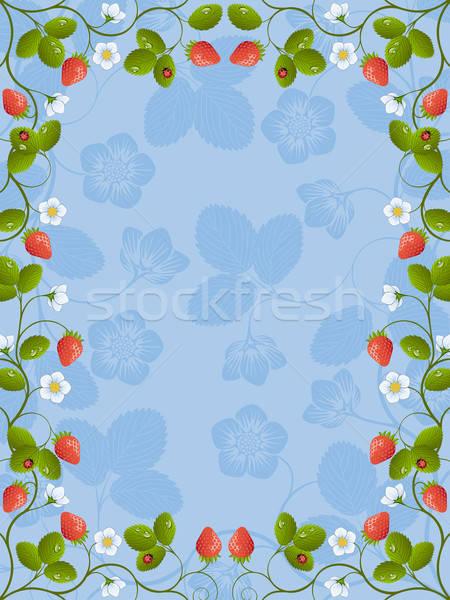 Floral cadre fraise fleur résumé fruits Photo stock © AbsentA