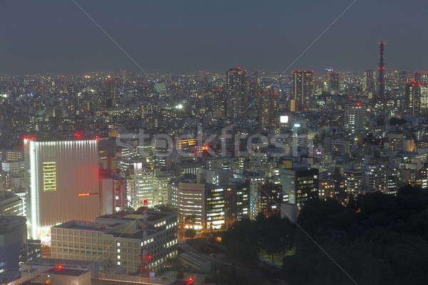 Tokio City at nighttime Stock photo © AchimHB