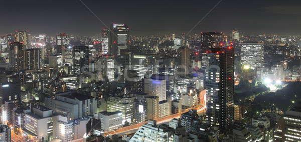 Tokyo gece panorama gökdelenler iş Stok fotoğraf © AchimHB