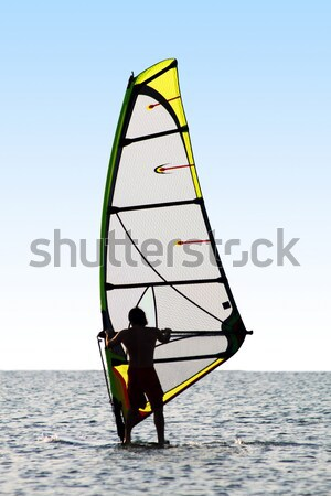 windsurfers and kitesurfers on waves of a gulf Stock photo © acidgrey
