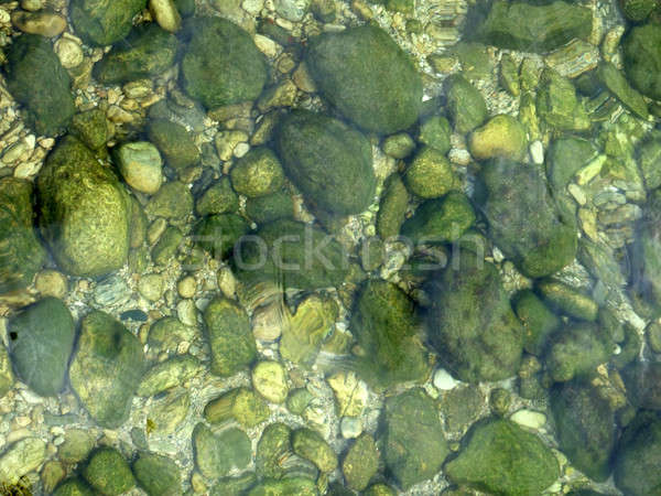 Stones in the water, covered by fine green seaweed Stock photo © acidgrey
